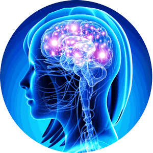 vias_neuroemocionales-redondo-300x300