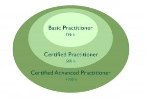 infografia cursos